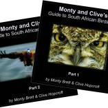 CD Covers for website